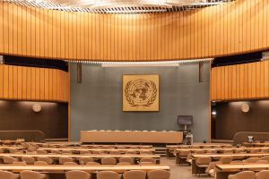 Experts Worry UN Setting Impossible Standard For Other Jew-Haters