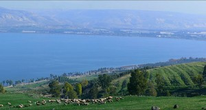 Study Finds Correlation Between Kinneret Water Level And Hype Over Kinneret Water Level