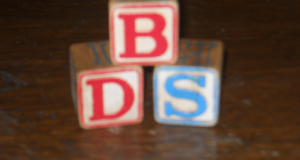 BDS Hoping To Gain Control Of Parent Committee At Preschool